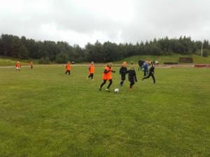 Frá Héraðsmóti á Laugum 1. júlí